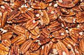 image of pecan nut  - Pecan nut or Carya illinoinensis is a species of woody plants in the family Juglandaceae - JPG