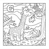 picture of g-spot  - Coloring book  - JPG