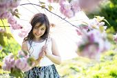 foto of japan girl  - Cute little brunette girl looking forward with japanese umbrella in pink cherry blossom in daylight in the garden copyspace horizontal picture - JPG