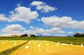 image of iceland farm  - Rural pastoral after harvesting - JPG