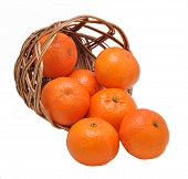 Mandarines In The Inverted Basket On A White Background