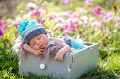 Cute Newborn Baby Boy, Sleeping Peacefully In Basket In Garden poster