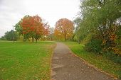 Outdoor Autumn poster