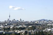 Auckland City With Rangitoto Island