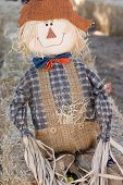 stock photo of hayride  - A cute scarecrow and the kids love it - JPG
