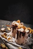 Campfire Cocktail With Roasted Marshmallow poster