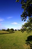Prado perto de Nantwich, Cheshire