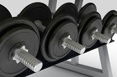 Row Of Metal Dumbbells On Support