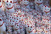 Lucky Cat On Shelf In Gotokuji Temple Tokyo Maneki Neko Japan Culture poster