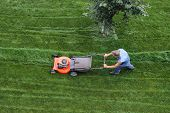 Man Cuts The Lawn. Lawn Mowing. Aerial View Lawn Mower On Green Grass. Lawn Mower Mower. Mowing Tool poster