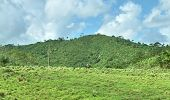 pic of greater antilles  - hilly overgrown panoramic scenery at the Dominican Republic a island of Hispanola wich is a part of the Greater Antilles archipelago in the Carribean region - JPG