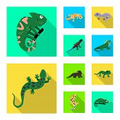 Isolated Object Of Tail And Fauna Sign. Collection Of Tail And Environment Stock Symbol For Web. poster