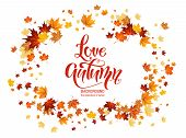 Autumn Leaves Frame. Nature Design Elements Set. Fall Maple Leaves For Decoration. poster