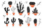 Vector Collection Of Black Hand Drawn Cactus Sketch Collection Isolated On White Background. Flat Ca poster