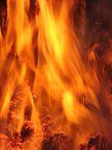 Fuego!!!