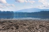 Climate Change And Global Warming Concept. Dry Lake And Drought Land With Forest And Blue Sky With W poster