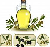 Bottle Of Oil With Green Olives And Olive Oil Labels. Vector Illustration.