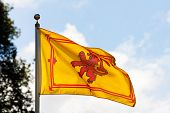 picture of braveheart  - The ancient royal flag of the monarch of Scotland the Rampant Lion - JPG