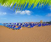 Beach Las vistas in Adeje coast hammocks at Tenerife south Canary Islands [ photo-illustration]