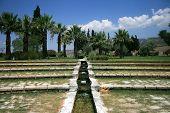 The green terrace(Pamukkale)