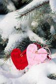 zwei Herzen im Schnee auf Tanne
