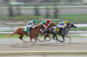 Exceso de velocidad de caballos de carrera
