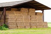 Straw Bales Under The Roof