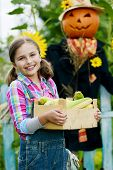 stock photo of scarecrow  - Gardening - JPG