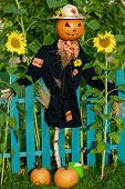 stock photo of scarecrow  - Scarecrow in the garden  - JPG