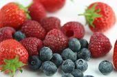 Zomer fruit