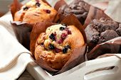 blueberry and chocolate muffins in paper cupcake holder