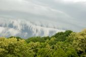 Storm Front.