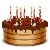 Birthday cake with candles isolated on white background vector illustration.
