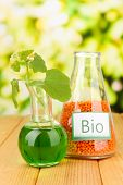 Conceptual photo of bio fuel from lentil.  On bright background
