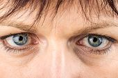 Middle Age Woman Eyes Macro