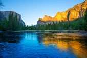 pic of sequoia-trees  - Yosemite Merced River el Capitan and Half Dome in California National Parks US - JPG