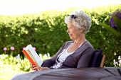 Relaxed Elder Woman Reading Book