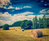 Vintage retro hipster style travel image of Agriculture background - Hay bales on field in summer