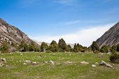 Landcscape hight mountains. Landscape in the fields.