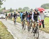 The Cyclist Danny Van Poppel On A Cobbled Road - Tour De France 2014