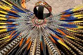 Mayan Headdress Closeup