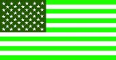 Usa Green Flag