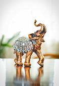 pic of indian elephant  - Golden indian elephant on table - JPG