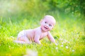 stock photo of teething baby  - Funny laughing baby boy wearing a diaper having fun in the garden learning to crawl on a green lawn with flowers on a sunny summer day - JPG