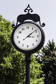 Big Old Fashioned Town Clock