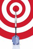 Dart Leaning On A Target