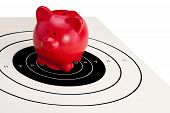 Piggy Bank On Bulls'eye (financial Security)
