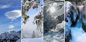 Collage - Winter Impressions