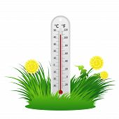 Summer Thermometer