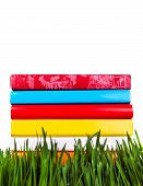 Books In The Grass